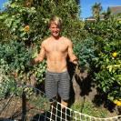 kale gardening